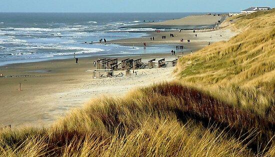 VIEW AT THE NORTHSEA BEACH NEAR SCHOORL by Johan  Nijenhuis