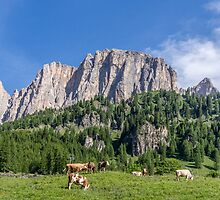 Dolomites, Italy by TOM KLAUSZ