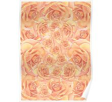 Warm Roses Poster