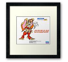 Freedom Fighters 2K3 Cream Framed Print