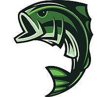 Green Fish Photographic Print