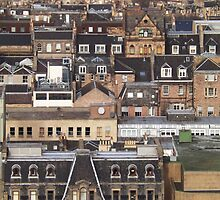 Edinburgh Rooftops by Stuart  Fellowes