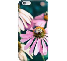 Purple Coneflowers with Bee iPhone Case/Skin