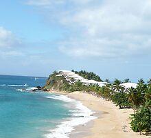 Sensational Tortola beach by Rachel Gagne