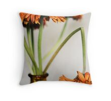 [Never frown...even when you're sad 'cause you never know when someone's falling in love with your smile] Throw Pillow