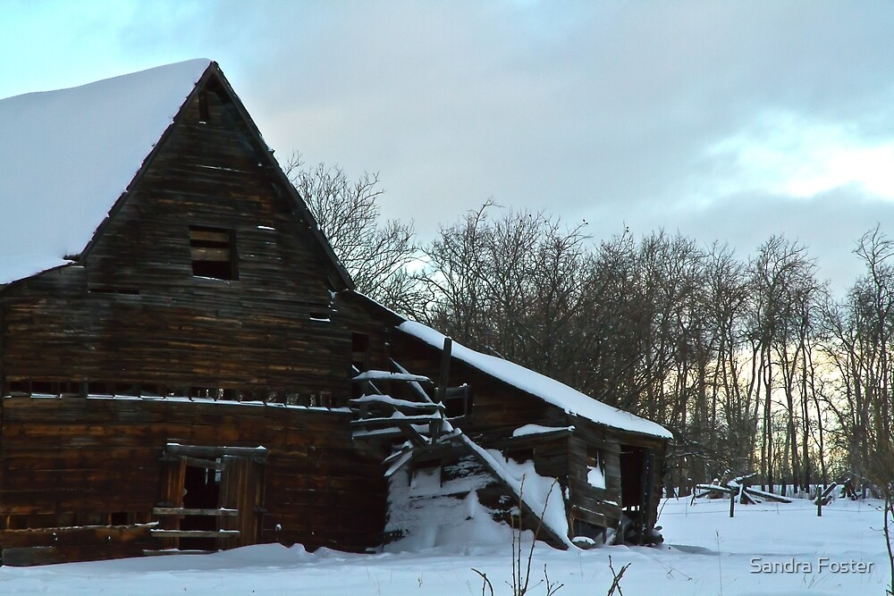 The Old Barn Winter Scene  by Sandra Foster