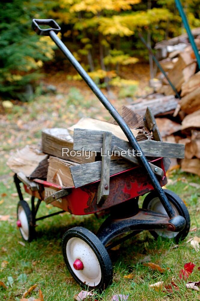 little red wagon by Roslyn Lunetta