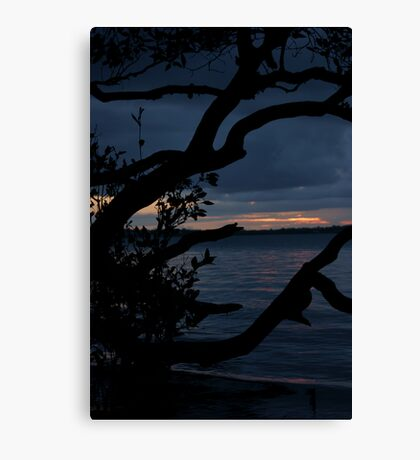 Night Falls Upon Us Canvas Print