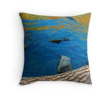 Autumn Water 3 Throw Pillow