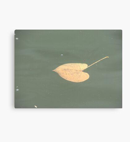 Water Love Canvas Print