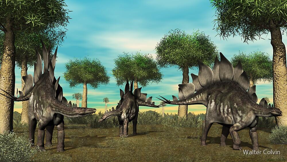 Stegosaurus by Walter Colvin