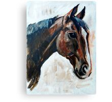 Brown Horse Head Canvas Print