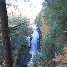 High Falls #1 by Tammy F