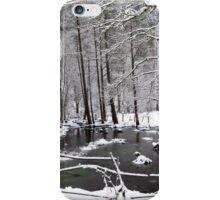 A Winter Wonderland Pond iPhone Case/Skin