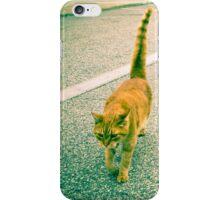 Alley Cat - Orange Tabby iPhone Case/Skin