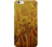Pantala Naga Pampa iPhone Case/Skin