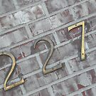 227 by Dylan & Sarah Mazziotti
