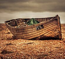 Fefe by Dave Godden