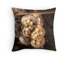 Birds Egg Fungi Throw Pillow