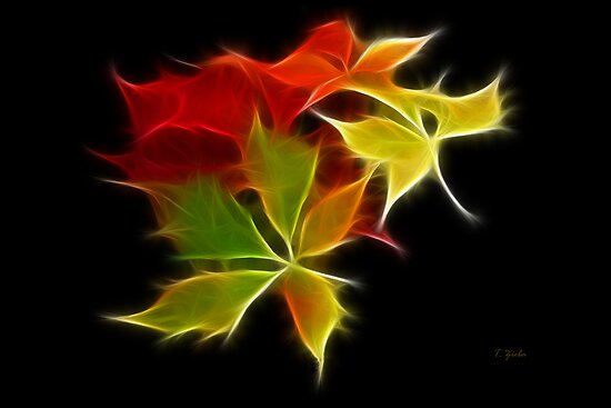 Colorful Leaves by Teresa Zieba