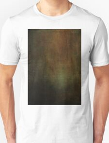 A Gap in the Past Unisex T-Shirt