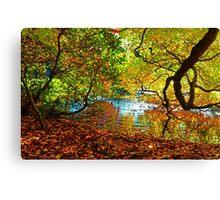 Perception of Autumn Canvas Print