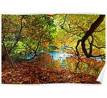 Perception of Autumn Poster