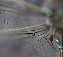 Matrix by salsbells69