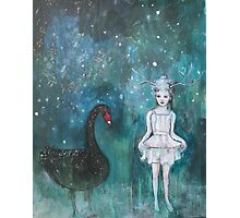 Black Swan, Guide Me To Morning Photographic Print