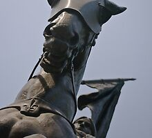 Jeanne  d'Arc by salsbells69