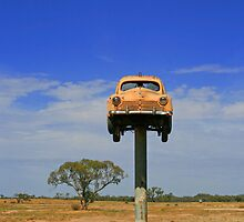 car on a stick by Peter  Middleton