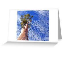 outback tree against sky Greeting Card