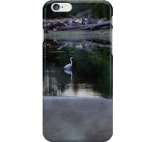 coast rivers iPhone Case/Skin