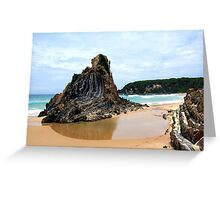shipwreck creek Greeting Card