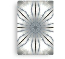light filters Canvas Print