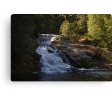 double water falls in washington Canvas Print