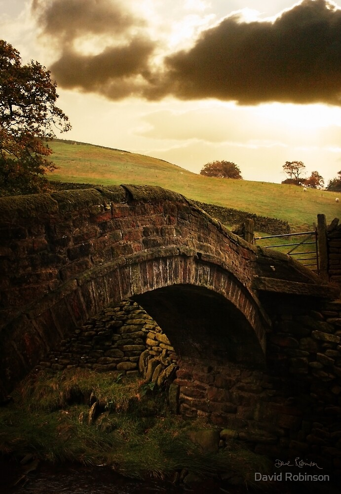 Close Gate Bridge  by David Robinson
