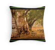 Flinders Rangers, South Australia Throw Pillow