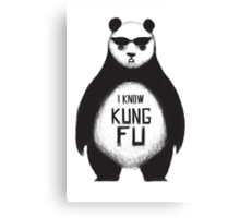 I know Kung Fu Canvas Print
