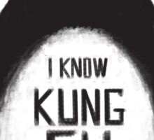 I know Kung Fu Sticker