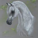 Wildon Impressive by Heidi Schwandt Garner