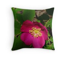 Wild Rose Throw Pillow
