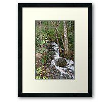 """Cascading Water"" Framed Print"
