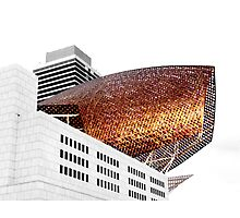 Frank Gehry's Fish, Barcelona Photographic Print