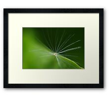 One lost Fairy Framed Print