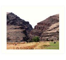 Picture Gorge near Dayville Oregon Art Print