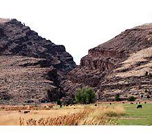 Picture Gorge near Dayville Oregon Photographic Print