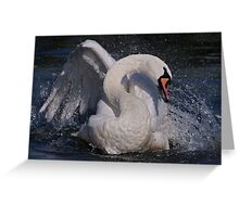 Swan Dance Greeting Card