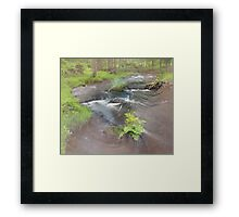 Rivers Watching Framed Print