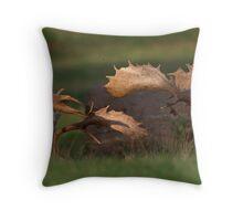 Rutting Fallow Deer Throw Pillow